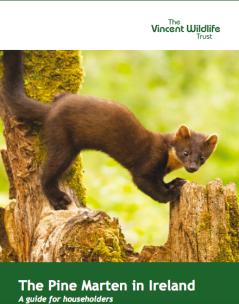VWT online PDF leaflets