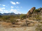 sonoran-desert-33-081359-n112-431507