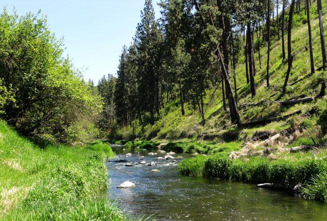 kammerzell-river